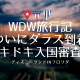 【WDW旅行記】ダラス乗り継ぎ!アメリカ入国審査編