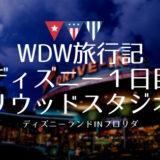 【WDW旅行記】弾丸の1日目!ハリウッドスタジオ編
